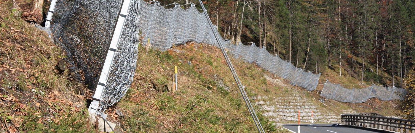 schutzsysteme in elektrischen netzen